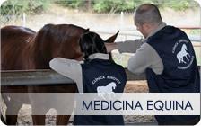 Medicina Equina