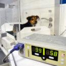 Servicios_Hospitalizacion-130x130