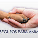 Servicios_seguros-para-animales-130x130
