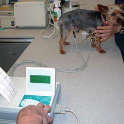Servicios_Diagnostico_Electrocardiografia