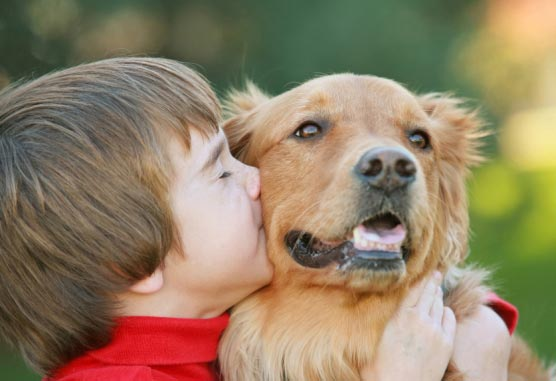 Relationships Between Pets And Kids