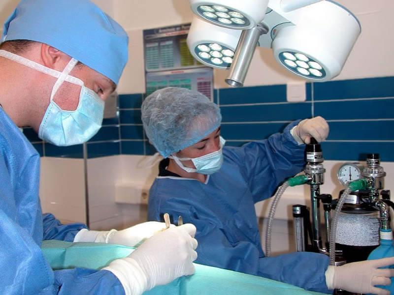 Cirugía Tejidos Blandos