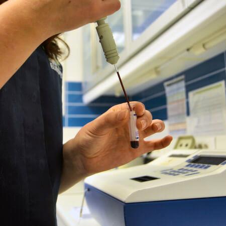 Clinica Veterinaria Eurovet Peñiscola Laboratorio